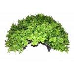 """Aquael Грот GRASS-CAVE S  2"""""""