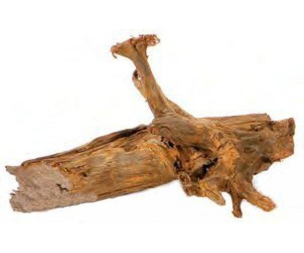Aquael Mangtove Root (XL) 60-80