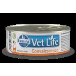Farmina Vet Life Natural Diet Cat Convalescence