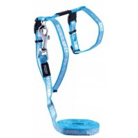 Rogz Шлейка+поводок Sparklecat Turquoise