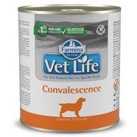 Консервы Farmina Vet Life Dog Convalescence