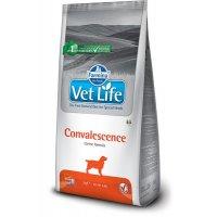 Farmina Vet Life Convalescence Dog