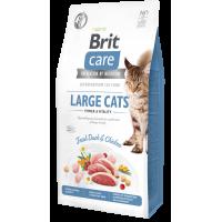 Brit Care Cat GF Large cats Power & Vitality для взрослых кошек крупных пород