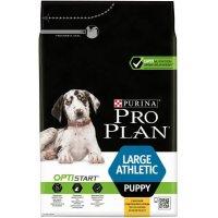 Pro Plan Puppy Large Athletic (Курица, рис)