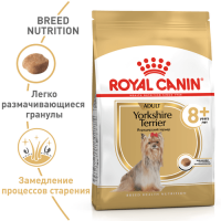 Royal Canin Yorkshire Terrier Ageing 8+